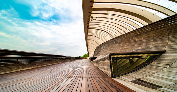free attractions in Singapore_Henderson Waves