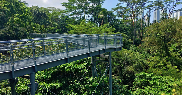 16 Wisata gratis di Singapura_blog_Southern ridge walking trail