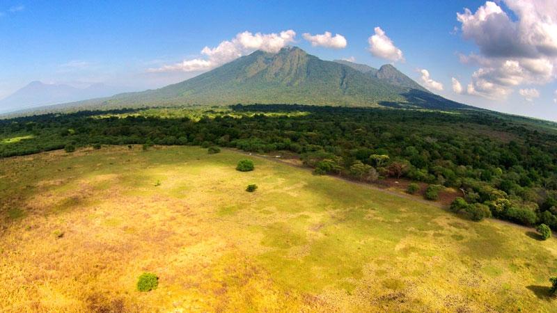Taman-Nasional-Baluran_Alam-Bebas-di-Timur-Pulau-Jawa-3