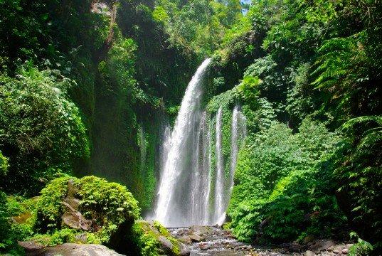 Sumber : www.indonesia-tourism.com