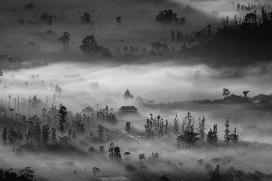 Tempat Wisata Tersembunyi di Bali - Desa Pinggan
