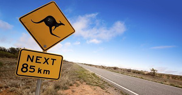 Road Trip via dailytelegraph.com.au