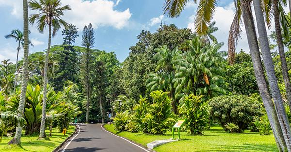 Destinasi Hari Ibu Kebun Raya Bogor