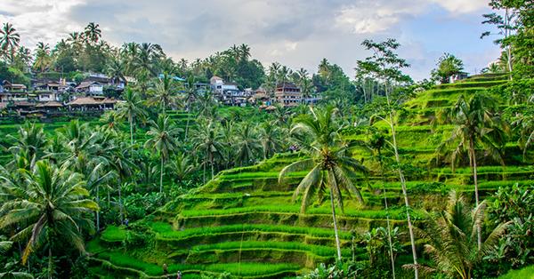 Destinasi Wisata Hari Ibu - Bali