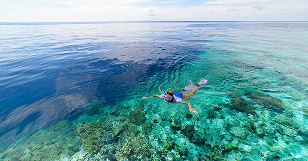 Things to do in Wakatobi