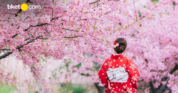 Arti Bunga Sakura
