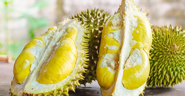 Tempat Wisata di Medan Keluarga - Durian Ucok