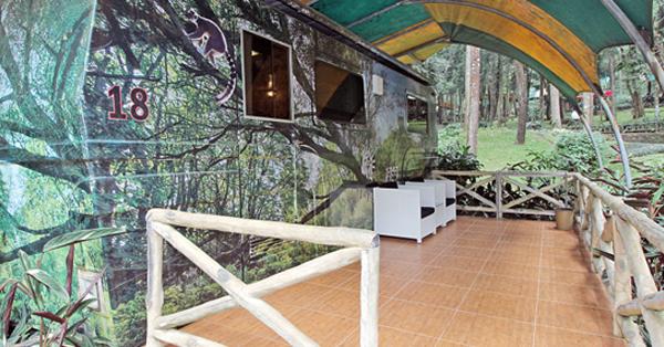 Hotel Dekat Taman Safari - Taman Safari Lodge