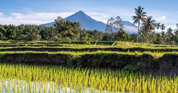 Jalur Kereta Api dengan Pemandangan Terindah di Indonesia - mutiara selatan