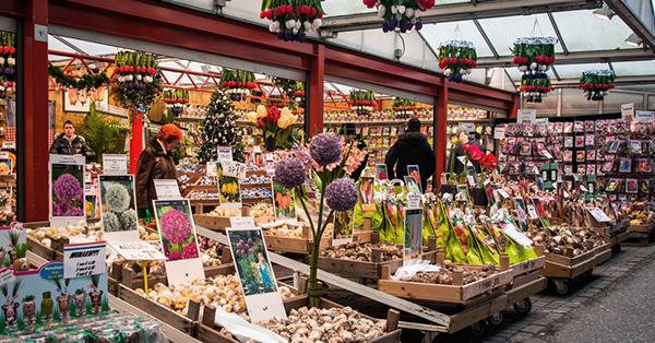 Liburan ke Amsterdam - Pasar Bunga Terapung