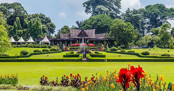 Long Weekend Getaway - Kebun Raya Bogor