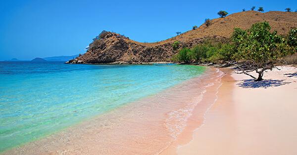 Obyek Wisata Labuan Bajo-pantai pink