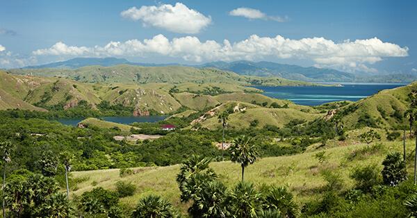 Obyek Wisata Labuan Bajo-pulau rinca