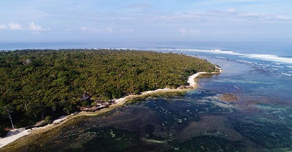 Pantai di Jawa Timur - Pantai Plengkung