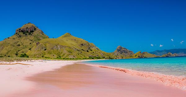 Pantai di Lombok - Pantai Pink