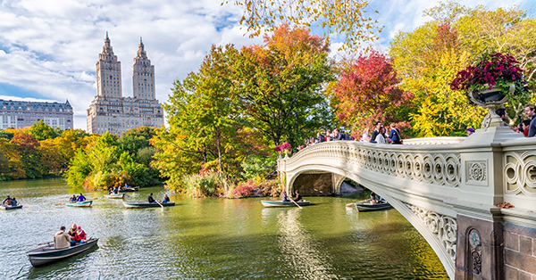 romantic things to do in New York_central park