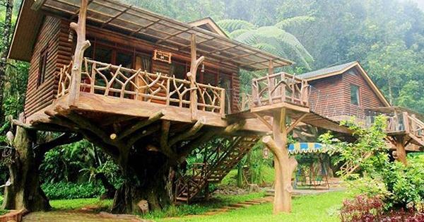 Rumah Pohon di Bogor - Taman Safari Indonesia