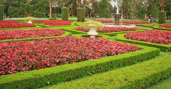 Taman Bunga Terindah di Indonesia-taman-bunga-nusantara