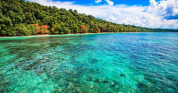 Tempat Wisata Derawan - Danau Kakaban