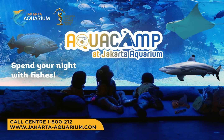 Tempat Wisata Jakarta Aquarium-Aquacamp