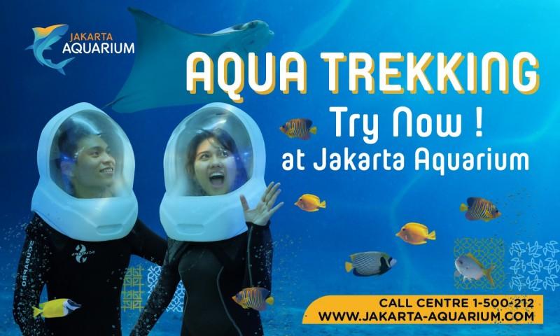 Tempat Wisata Jakarta Aquarium-Aquatrekking