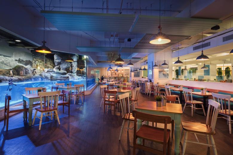 Tempat Wisata Jakarta Aquarium-Pingoo Restaurant