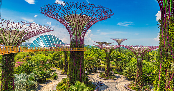 Tempat Wisata Singapura dalam Film Crazy Rich Asians - Garden By The Bay
