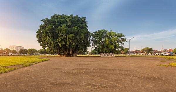 Tempat Wisata Terlarang - alun alun kidul