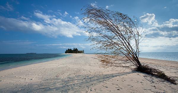Tempat Wisata di Halmahera - Pulau Dodola