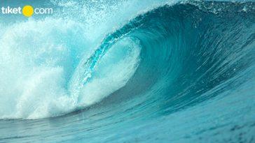 Tips Menyelamatkan Diri dari Tsunami