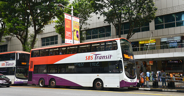 Transportasi Publik di Singapore - Bus