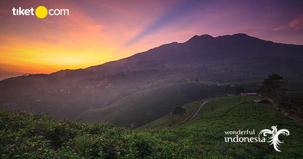 9 Tempat Wisata Baru Di Solo Destinasi Terbaik Di Surakarta