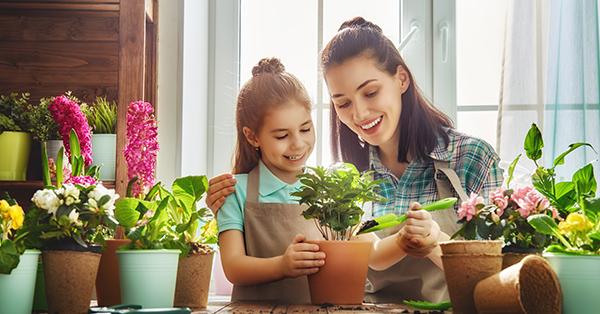 unique birthday gifts_plants